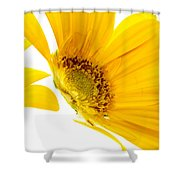 Half Yellow Gerbera Shower Curtain