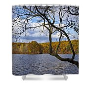 Hall Lake In Autumn No 0118 Shower Curtain