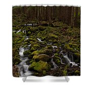 Hall Of The Mosses Shower Curtain