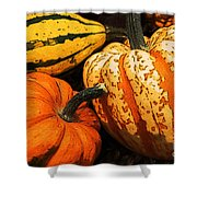 Halloween Colors Shower Curtain
