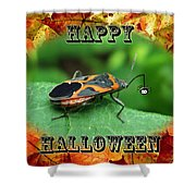 Halloween Greeting Card - Box Elder Bug Shower Curtain