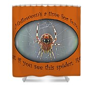 Halloween Greeting Card - Marbled Orb Weaver Spider Shower Curtain