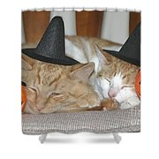 Halloween Party Animals Shower Curtain