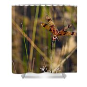 Halloween Pennant Dragonfly Shower Curtain