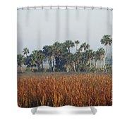 Hammock, Everglades National Park Shower Curtain