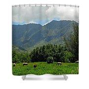 Hanalei Horses Shower Curtain