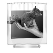 Hand Full Of Squirrel Shower Curtain