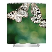 Handkerchief Butterfly Or Wood Nymph Shower Curtain
