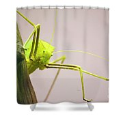 Handsome Boy Shower Curtain