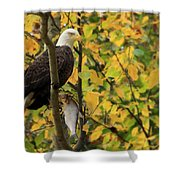 Hang Around For Dinner Shower Curtain