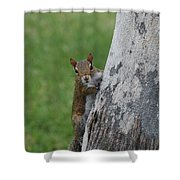 Hanging And Chilling Shower Curtain