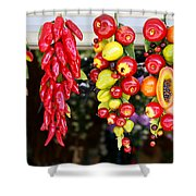 Hanging Food Shower Curtain