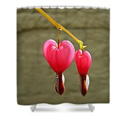Hanging Together Shower Curtain