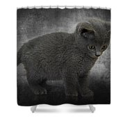 Hannah's Kitten Shower Curtain