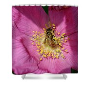 Happy As Can Bee Shower Curtain