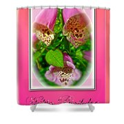 Happy Birthday Card - Foxgloves Shower Curtain