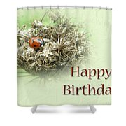 Happy Birthday Greeting Card - Ladybug On Dried Queen Anne's Lace Shower Curtain