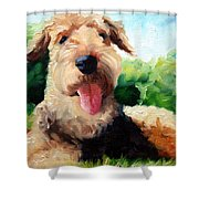 Happy Dale Shower Curtain