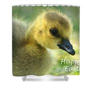 Happy Easter Gosling Shower Curtain
