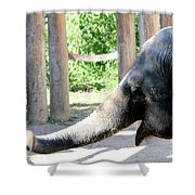 Happy Elephant Shower Curtain