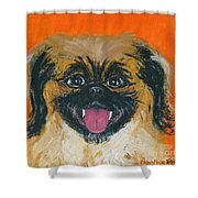 Happy Face Shower Curtain