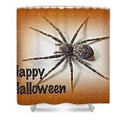 Happy Halloween Spider Greeting Card - Dolomedes Tenebrosus Shower Curtain