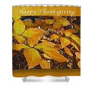 Happy Thanksgiving Beech Leaves Shower Curtain