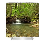 Happy Trail Falls Shower Curtain