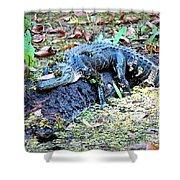 Hard Day In The Swamp - Digital Art Shower Curtain