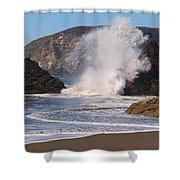 Harris Beach Sprayed Shower Curtain