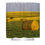 Harvest In Montana Shower Curtain