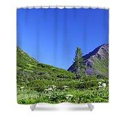 Hatcher Pass Alaska Shower Curtain