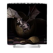 Hatching Dragons Shower Curtain