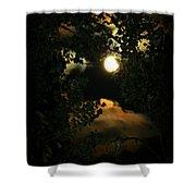 Haunting Moon Shower Curtain