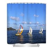 Hawaii Sailboats Shower Curtain