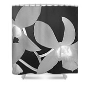 Hawaiian Floral Detail Shower Curtain