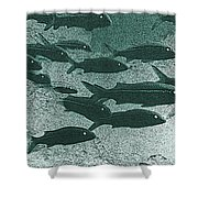 Hawaiian Goatfish School Shower Curtain