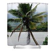Hawaiian Palm Shower Curtain