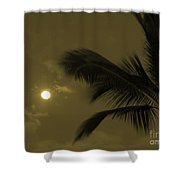 Hawaiian Palm Shower Curtain