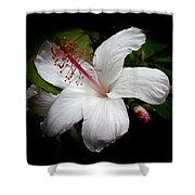 Hawaiian White Hibiscus Shower Curtain