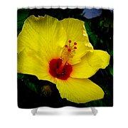 Hawaiian Yellow Hibiscus Shower Curtain