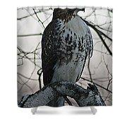 Hawk 7 Shower Curtain