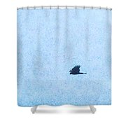 Hawk Eyes Shower Curtain