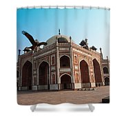 Hawk Flying Next To Humayun Tomb Delhi Shower Curtain