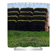 Hay Shower Curtain
