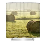 Hay Bales In Mist At Sunrise Shower Curtain
