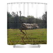 Hay Lined Up Shower Curtain