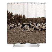Hay Maker Shower Curtain