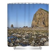 Haystack Rock 2 Shower Curtain