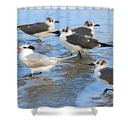 He Is The One Shower Curtain by Susanne Van Hulst